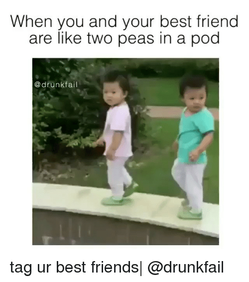 Best Friends Are Like: When you and your best friend  are like two peas in a pod  a drunk tag ur best friends  @drunkfail