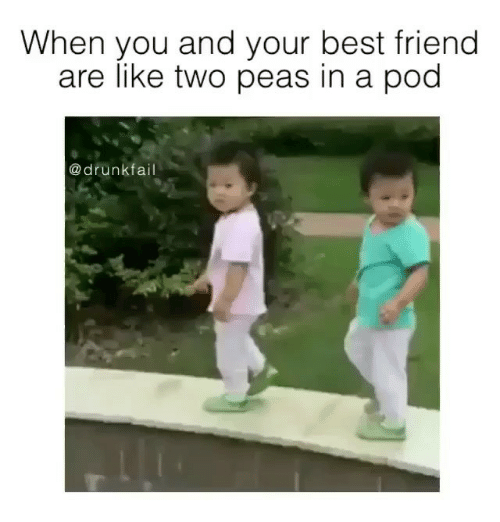 Best Friends Are Like: When you and your best friend  are like two peas in a pod  a drunk  fail