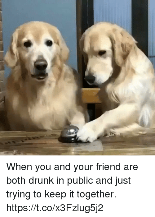 Drunk, Girl Memes, and Friend: When you and your friend are both drunk in public and just trying to keep it together. https://t.co/x3Fzlug5j2