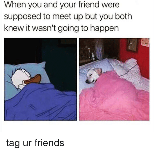Memes, 🤖, and Supposably: When you and your friend were  supposed to meet up but you both  knew it wasn't going to happen tag ur friends