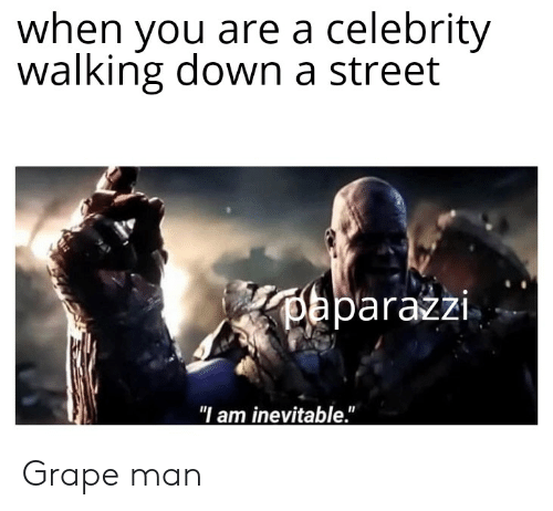 "Dank Memes, Down, and Celebrity: when you are a celebrity  walking down a street  oaparazzi  ""I am inevitable."" Grape man"