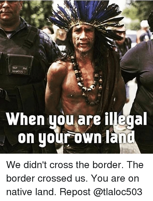 Memes, Cross, and 🤖: When you are illegal  on uour own lano We didn't cross the border. The border crossed us. You are on native land. Repost @tlaloc503