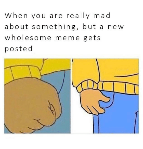 Meme, Mad, and Wholesome: When you are really mad  about something, but a new  wholesome meme gets  posted