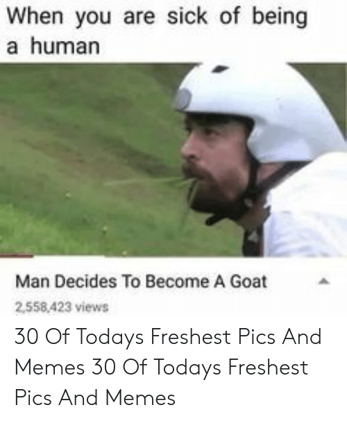 Memes, Goat, and Sick: When you are sick of being  a human  Man Decides To Become A Goat  2558,423 views 30 Of Todays Freshest Pics And Memes 30 Of Todays Freshest Pics And Memes
