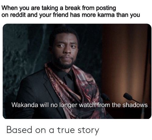 Reddit, True, and Break: When you are taking a break from posting  on reddit and your friend has more karma than you  Wakanda will no longer watch from the shadows Based on a true story