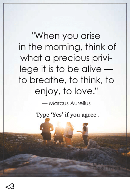 "privy: ""When you arise  in the morning, think of  what a precious privi  lege it is to be alive  to breathe, to think, to  enjoy, to love.""  Marcus Aurelius  Type 'Yes' if you agree <3"