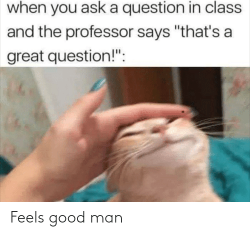 "A Question: when you ask a question in class  and the professor says ""that's a  great question!"": Feels good man"