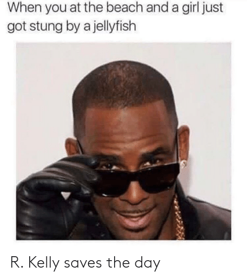 R. Kelly, Reddit, and Beach: When you at the beach and a girl just  got stung by a jellyfish R. Kelly saves the day