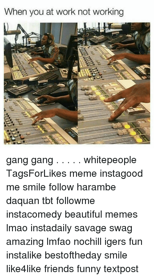 Haramber: When you at work not working gang gang . . . . . whitepeople TagsForLikes meme instagood me smile follow harambe daquan tbt followme instacomedy beautiful memes lmao instadaily savage swag amazing lmfao nochill igers fun instalike bestoftheday smile like4like friends funny textpost
