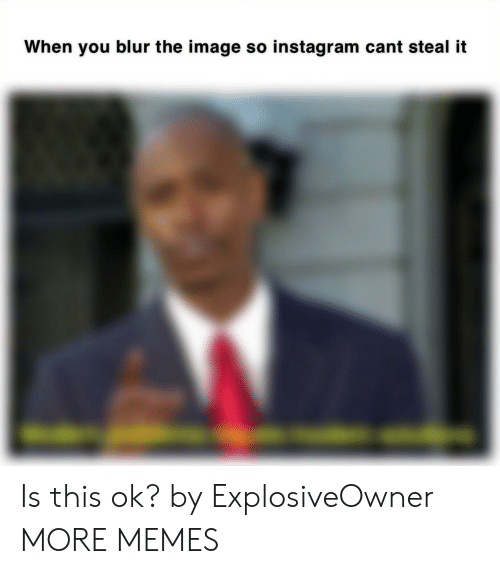 blur: When you blur the image so instagram cant steal ift Is this ok? by ExplosiveOwner MORE MEMES