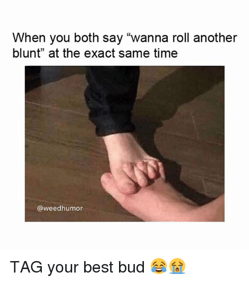"""Weed, Best, and Marijuana: When you both say """"wanna roll another  blunt"""" at the exact same time  @weedhumor TAG your best bud 😂😭"""
