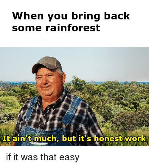 When You Bring Back Some Rainforest It Ain T Much but It's ...