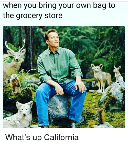 Memes, California, and 🤖: when you bring your own bag to  the grocery store What's up California