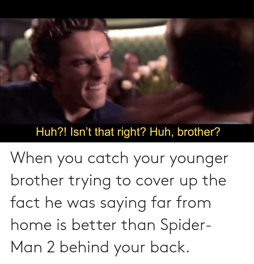 fact: When you catch your younger brother trying to cover up the fact he was saying far from home is better than Spider-Man 2 behind your back.