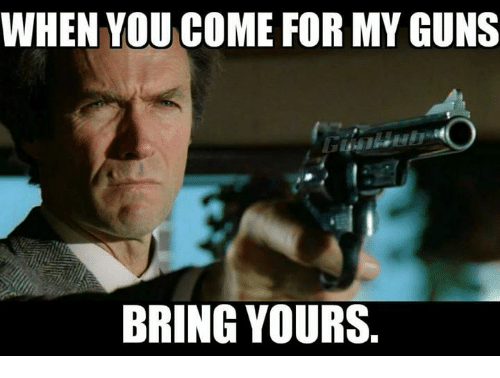 Guns, Memes, and 🤖: WHEN YOU COME FOR MY GUNS  BRING YOURS