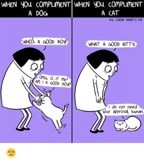 Memes, 🤖, and Dog: WHEN yOu COMPLMENT WHEN You comPLMENT  A DOG  A CAT  By LORYN BRANTZ/BF  WHOS A G00D BOP  WHAT A G00D KITTy  oma, IS IT ME?  I do not need  your approva、human 😒