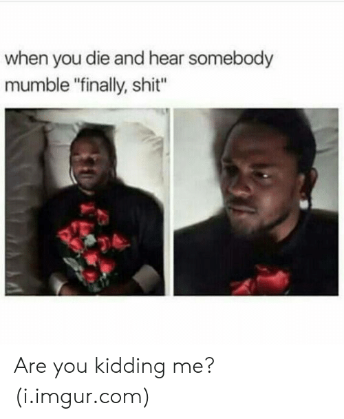 "mumble: when you die and hear somebody  mumble ""finally, shit"" Are you kidding me? (i.imgur.com)"