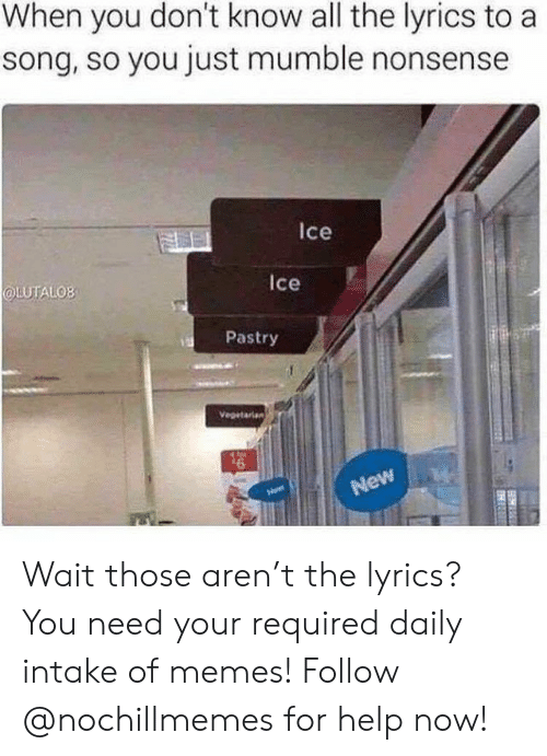 Vegetarian: When you don't know all the lyrics to a  song, so you just mumble nonsense  Ice  LUTALOB  Ice  Pastry  Vegetarian  New Wait those aren't the lyrics?  You need your required daily intake of memes! Follow @nochillmemes for help now!