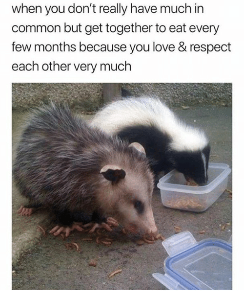 Love, Respect, and Common: when you don't really have much in  common but get together to eat every  few months because you love & respect  each other very much