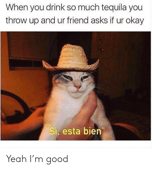 Yeah, Good, and Okay: When you drink so much tequila you  throw up and ur friend asks if ur okay  Si. esta bien Yeah I'm good