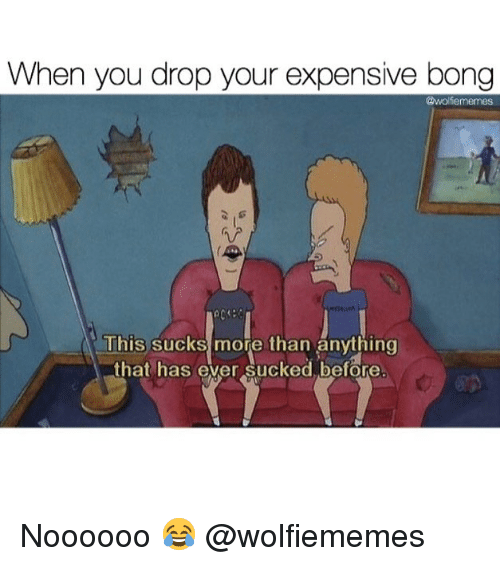 Weed, Marijuana, and Bong: When you drop your expensive bong  @wolfememes  This sucks more than änything  that has ever sucked before Noooooo 😂 @wolfiememes