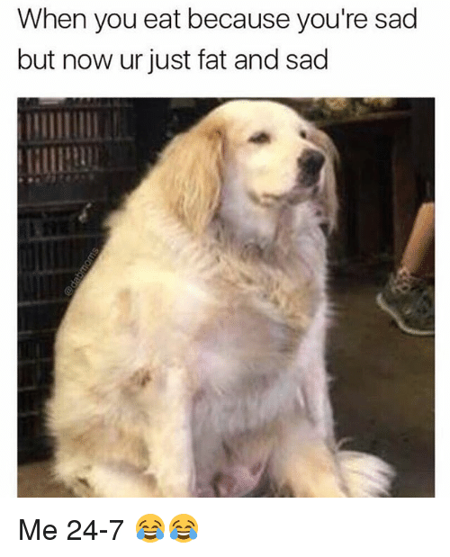 Memes, Fat, and Sad: When you eat because you're sad  but now ur just fat and sad Me 24-7 😂😂