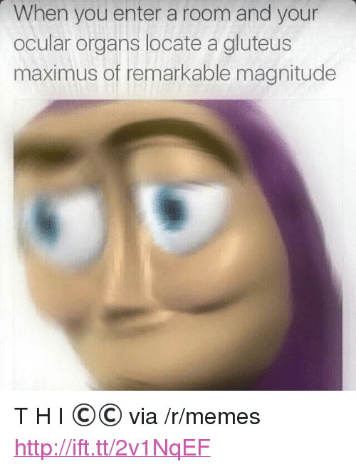 "Maximus, Memes, and Http: When you enter a room and your  ocular organs locate a gluteus  maximus of remarkable magnitude <p>T H I ©© via /r/memes <a href=""http://ift.tt/2v1NqEF"">http://ift.tt/2v1NqEF</a></p>"