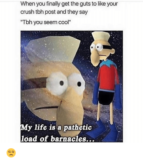 """Crush, Funny, and Life: When you finally get the guts to like your  crush tbh post and they say  """"Tbh you seem cool""""  My life is a pathetic  load of barnacles... 😒"""