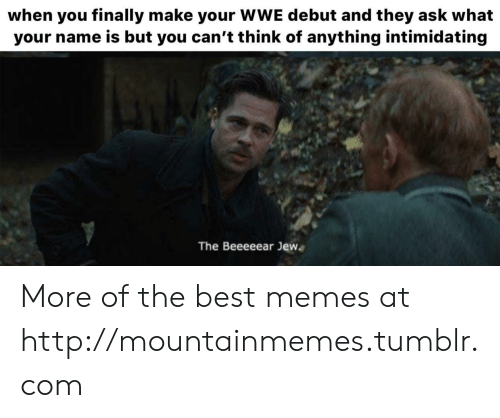 Memes, Tumblr, and World Wrestling Entertainment: when you finally make your WWE debut and they ask what  your name is but you can't think of anything intimidating  The Beeeeear Jew More of the best memes at http://mountainmemes.tumblr.com