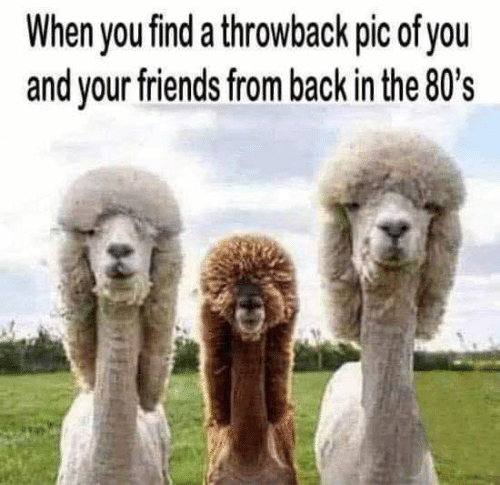 80s, Dank, and Friends: When you find a throwback pic of you  and your friends from back in the 80's