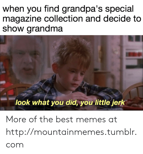 Grandma, Memes, and Tumblr: when you find grandpa's special  magazine collection and decide to  show grandma  look what you did, you little jerk More of the best memes at http://mountainmemes.tumblr.com