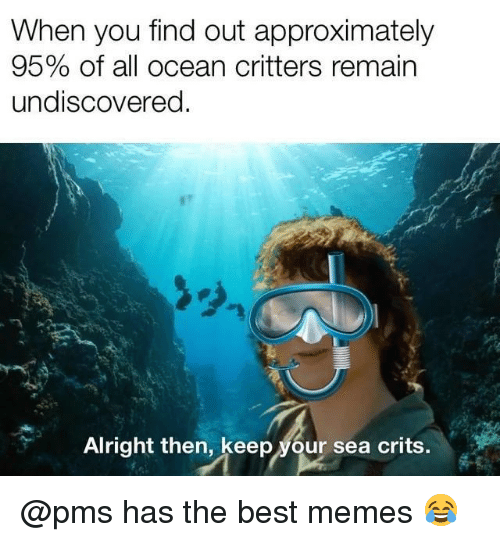 Memes, Best, and Ocean: When you find out approximately  95% of all ocean critters remain  undiscovered.  Alright then, keep your sea crits. @pms has the best memes 😂