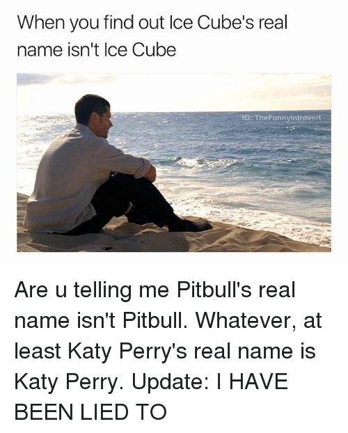 Ice Cube, Katy Perry, and Pitbull: When you find out Ice Cube's real  name isn't Ice Cube  G: TheFunnyIntrovert Are u telling me Pitbull's real name isn't Pitbull. Whatever, at least Katy Perry's real name is Katy Perry. Update: I HAVE BEEN LIED TO