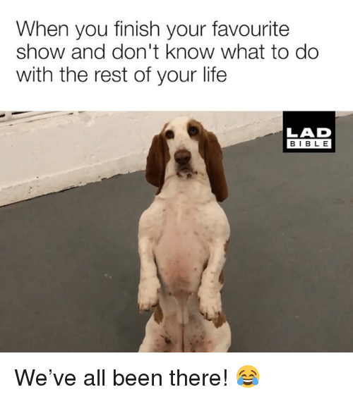 Life, Memes, and Bible: When you finish your favourite  show and don't know what to do  with the rest of your life  LAD  BIBLE We've all been there! 😂