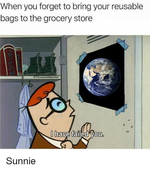 You, Store, and Bags: When you forget to bring your reusable  bags to the grocery store  have faileo vou Sunnie