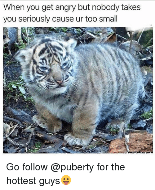 Funny, Puberty, and Angry: When you get angry but nobody takes  you seriously cause ur too small Go follow @puberty for the hottest guys😛