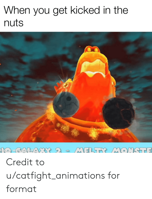 Dank Memes, Format, and You: When you get kicked in the  nuts  made with memati  MELTY MONSTTE Credit to u/catfight_animations for format