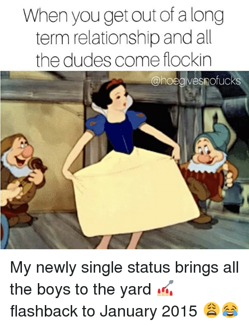 Girl Memes, Single, and All The: When you get out of a long  term relationship and al  the dudes come flockin  @hoegivesnofucks My newly single status brings all the boys to the yard 💅🏼 flashback to January 2015 😩😂