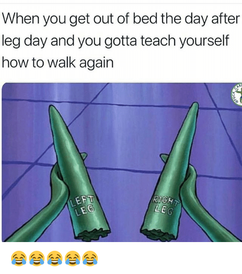 Day After Leg Day: When you get out of bed the day after  leg day and you gotta teach yourself  how to walk again  LEFT  RIGHT 😂😂😂😂😂