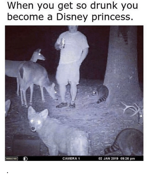 Disney, Drunk, and Camera: When you get so drunk you  become a Disney princess.  02 JAN 2019 09:26 pm  CAMERA 1  MOULTR .