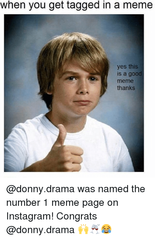 Instagram, Meme, and Memes: when you get tagged in a meme  yes this  is a good  meme  thanks @donny.drama was named the number 1 meme page on Instagram! Congrats @donny.drama 🙌🥂😂