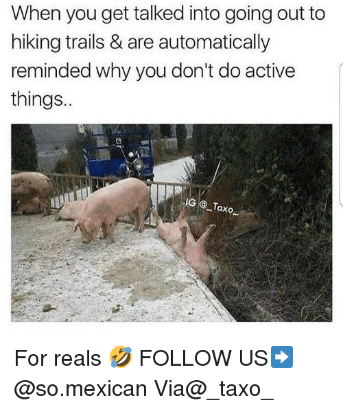 Memes, Mexican, and 🤖: When you get talked into going out to  hiking trails & are automatically  reminded why you don't do active  things.  IG Taxo For reals 🤣 FOLLOW US➡️ @so.mexican Via@_taxo_