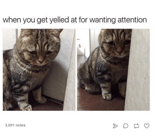 Attentation: when you get yelled at for wanting attention  3,691 notes