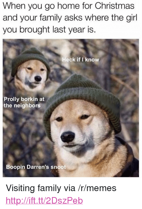 """Christmas, Family, and Memes: When you go home for Christmas  and your family asks where the girl  you brought last year is.  Heck if I know  Prolly borkin at  the neighbors  Boopin Darren's snoot <p>Visiting family via /r/memes <a href=""""http://ift.tt/2DszPeb"""">http://ift.tt/2DszPeb</a></p>"""