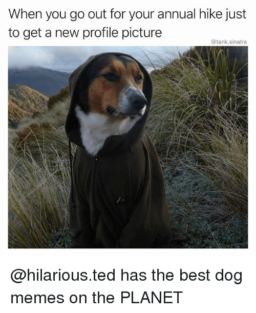 Funny Memes For Profile Pictures : Best memes about profile