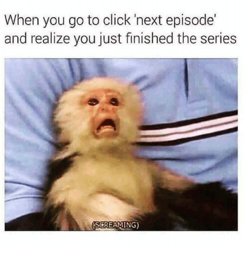 Click, Memes, and 🤖: When you go to click 'next episode'  and realize you just finished the series  SCREAMING)