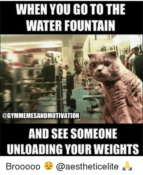 Gym, Water, and You: WHEN YOU GO TO THE  WATER FOUNTAIN  @GYMMEMESANDMOTIVATION  AND SEE SOMEONE  UNLOADING YOUR WEIGHTS Brooooo 😣 @aestheticelite 🙏