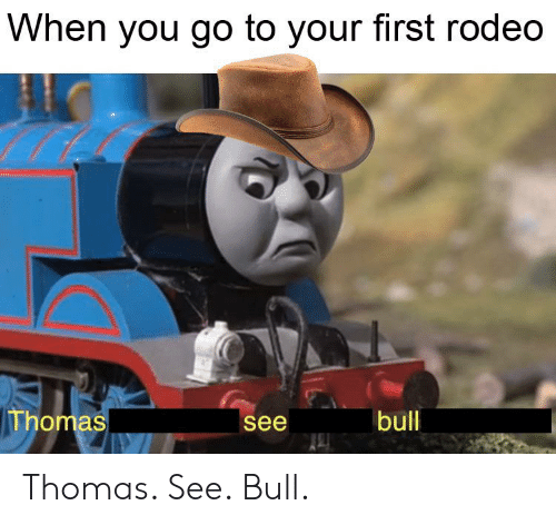 Funny, Rodeo, and Thomas: When you go to your first rodeo  Thomas  bull  see Thomas. See. Bull.