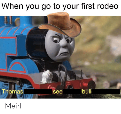 bull: When you go to your first rodeo  Thomas  bull  see Meirl