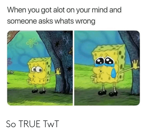 True, Mind, and Asks: When you got alot on your mind and  someone asks whats wrong So TRUE TwT